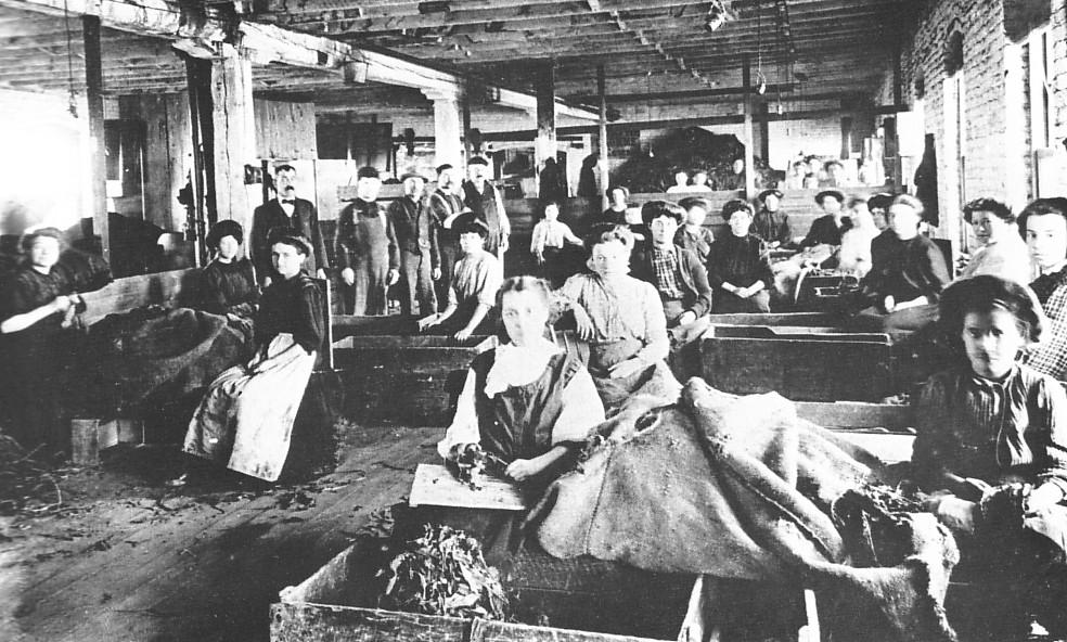Travailleurs du tabac au début du XXe siècle